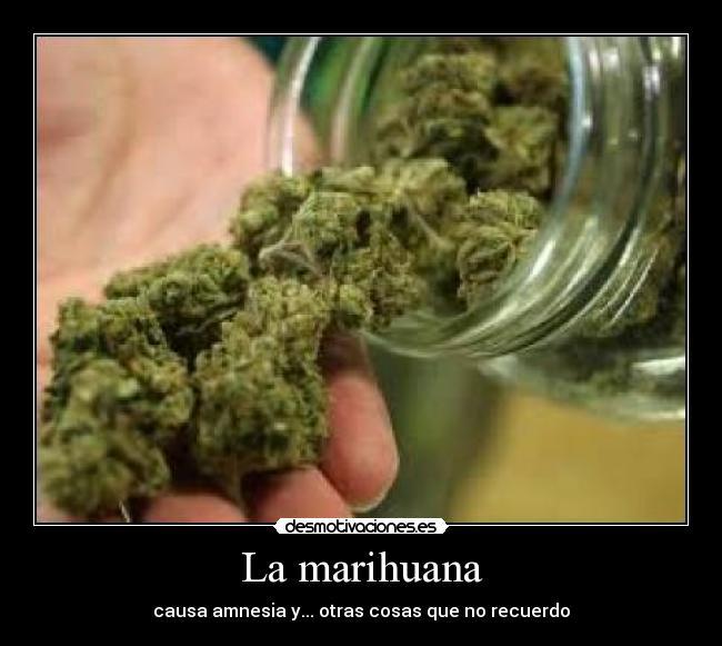 carteles marihuana desmotivaciones