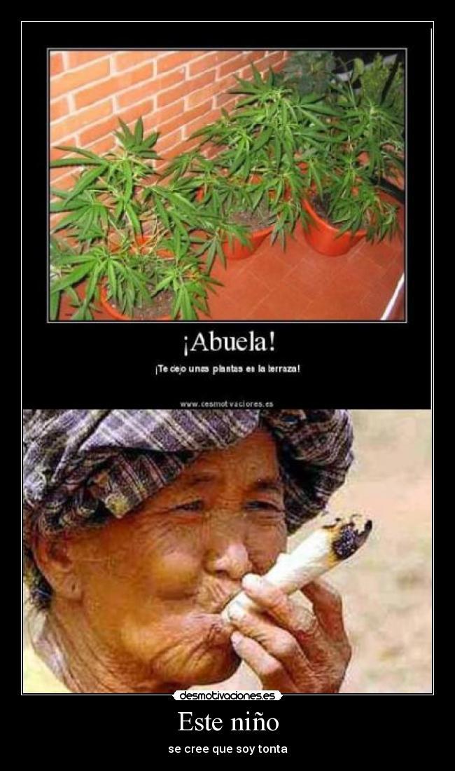 carteles abuela marihuana tonto desmotivaciones