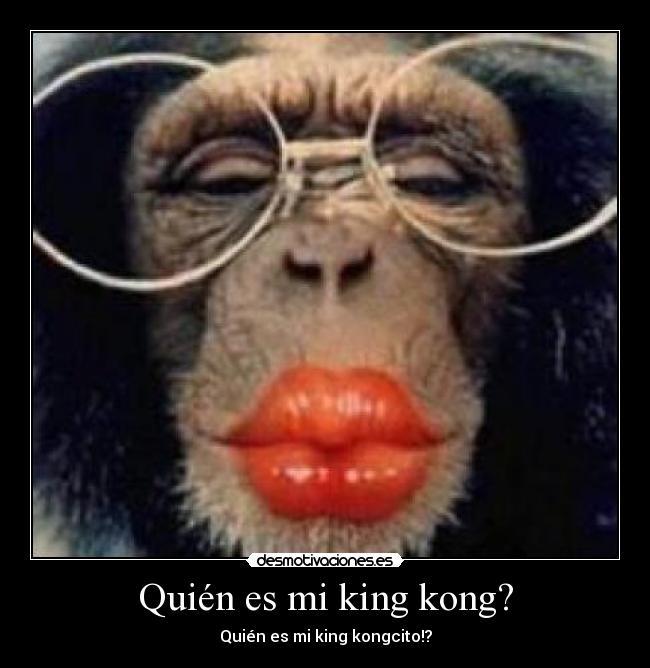 Fotos De Monos Con Frases Imagui