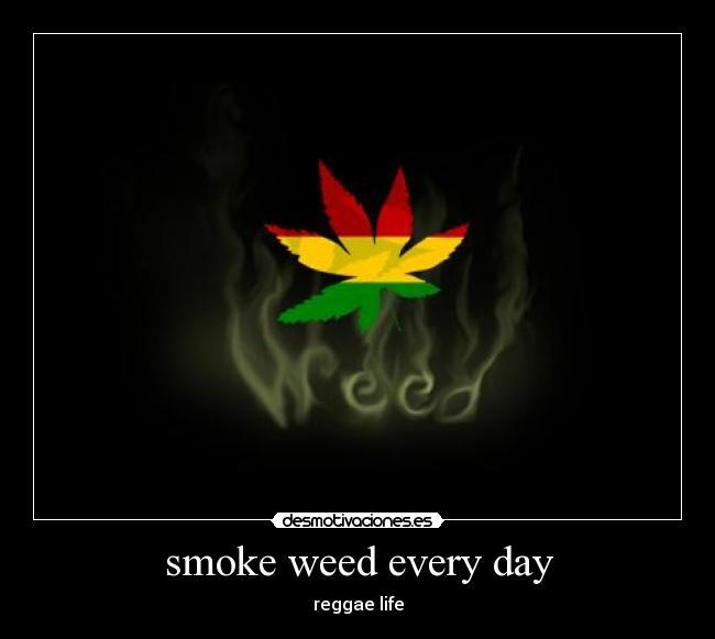Rastafari Desmotivaciones Es Rastafaris Rasta Jpg