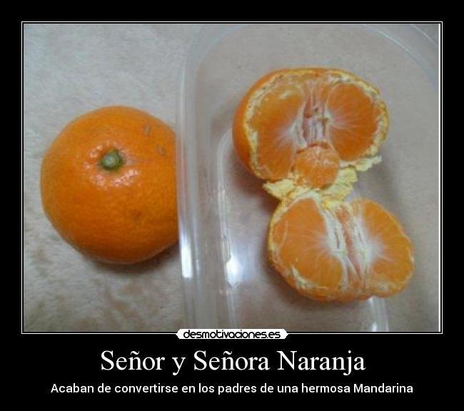 carteles naranja embarazada desmotivaciones