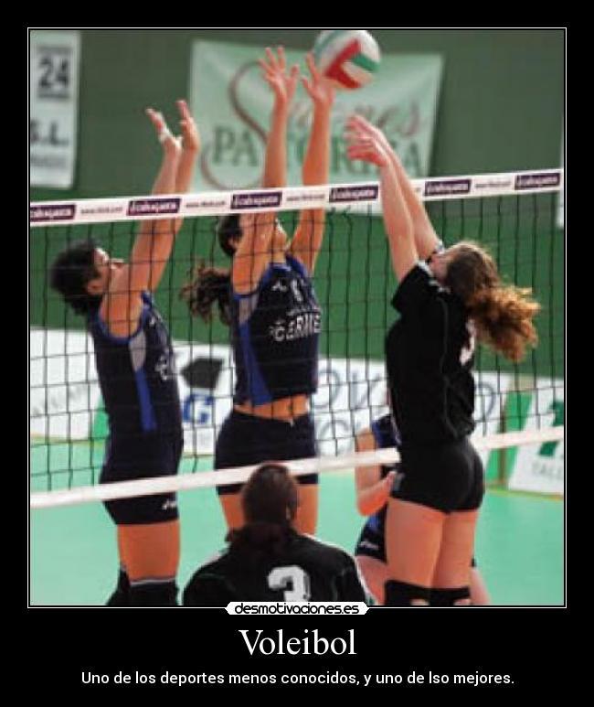 carteles voleibol voleyball desmotivaciones