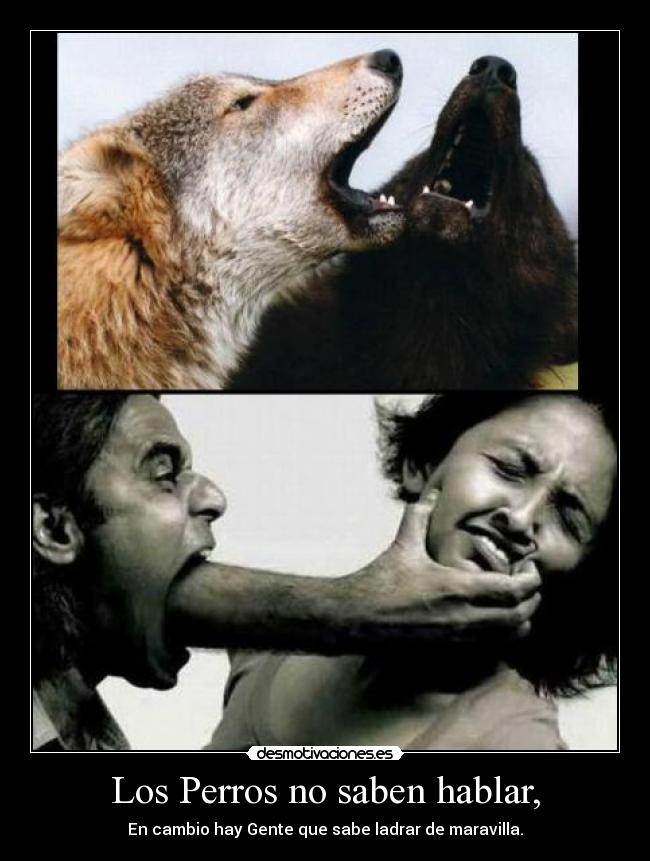 Hay perros que no saben ladrar