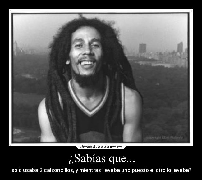 carteles bob marley the lion one love three little birds this love the legend jamming desmotivaciones