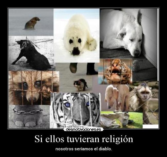carteles religion animales desmotivaciones