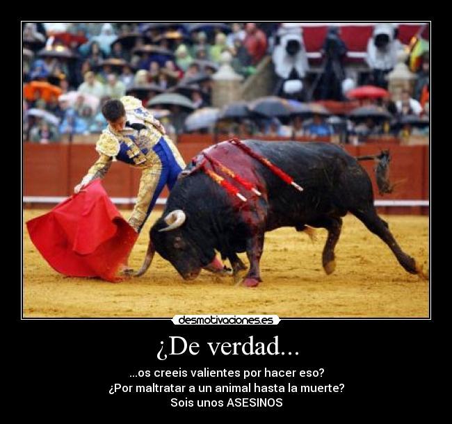 carteles asesinos toreros desmotivaciones