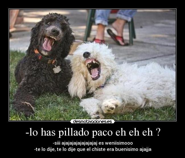 http://desmotivaciones.es/demots/201104/F_ANIMALESGRAM_6DDCBDC_crop.jpg