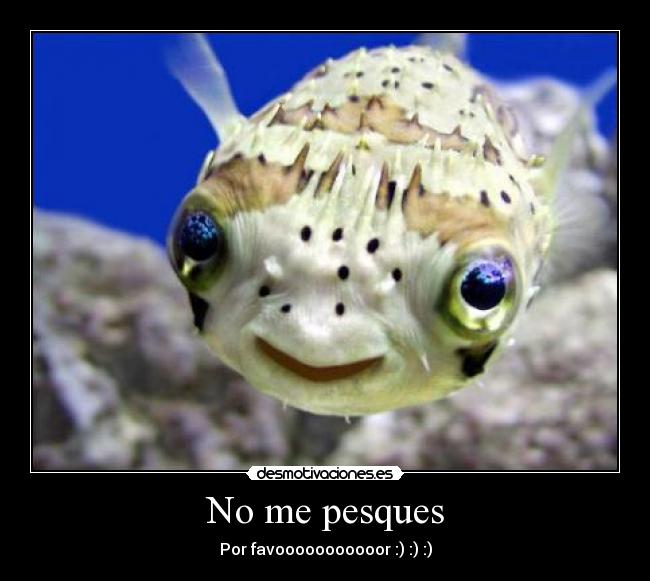 No me pesques - Por favooooooooooor :) :) :)