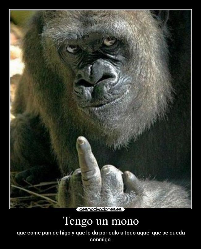 Tengo Un Mono Desmotivaciones