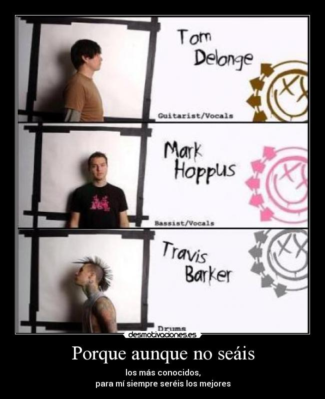 carteles blink182 the best desmotivaciones