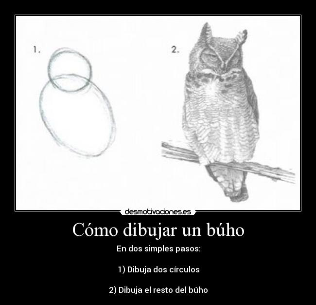 Como dibujar un búho (how to draw an owl) - Taringa!