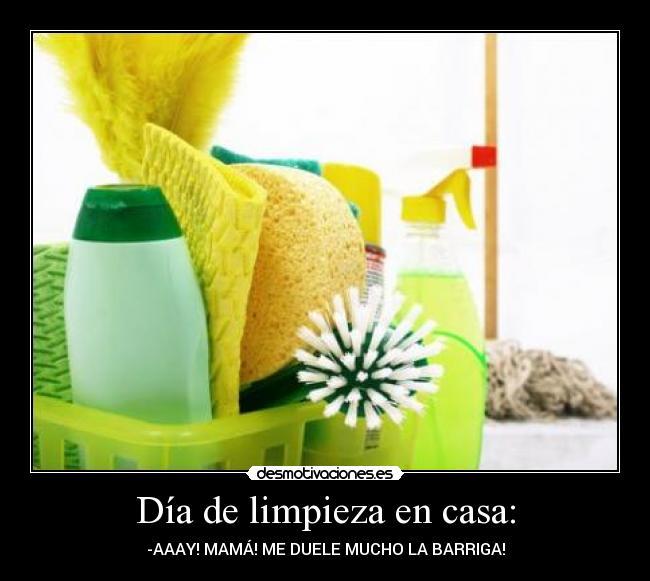 D a de limpieza en casa desmotivaciones - Limpieza en casa ...