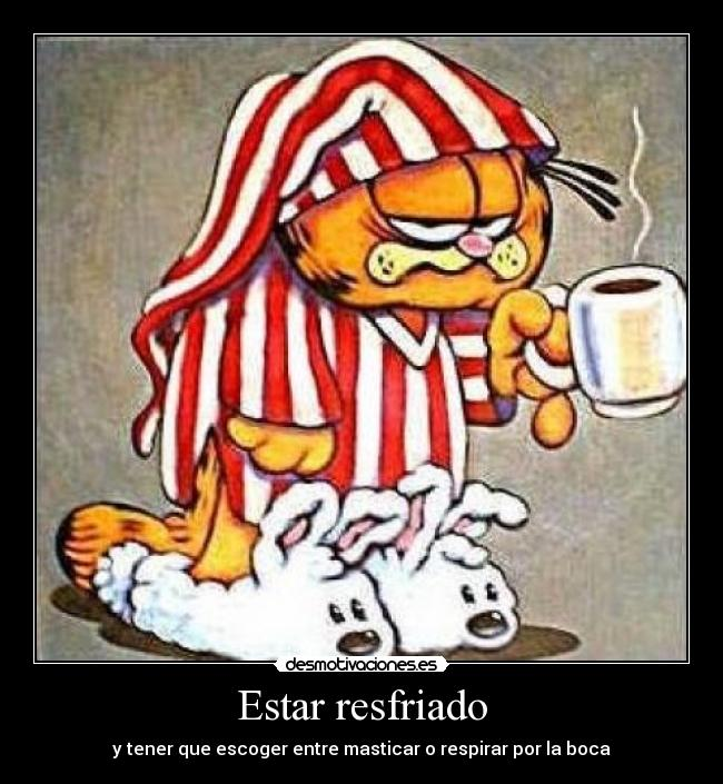 Carteles Resfriado Garfield Desmotivaciones