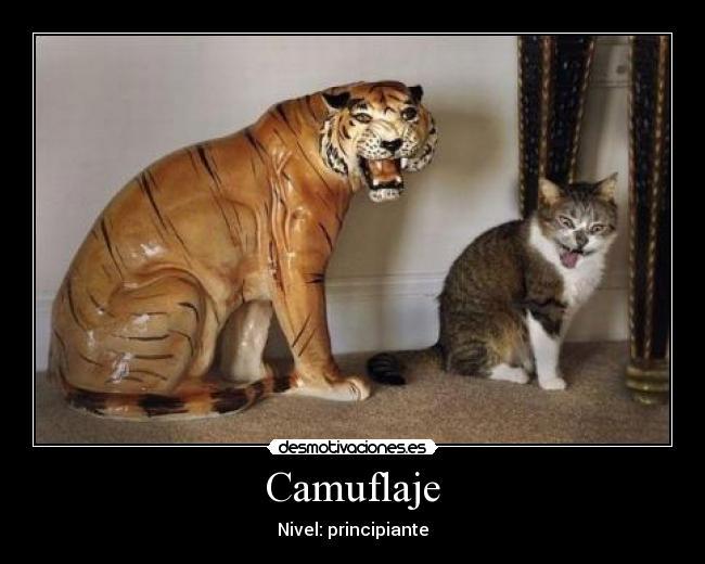 carteles gato figura desmotivaciones