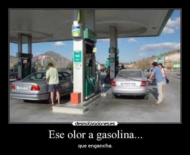 Opel la omega 2.0 gasolina del vídeo