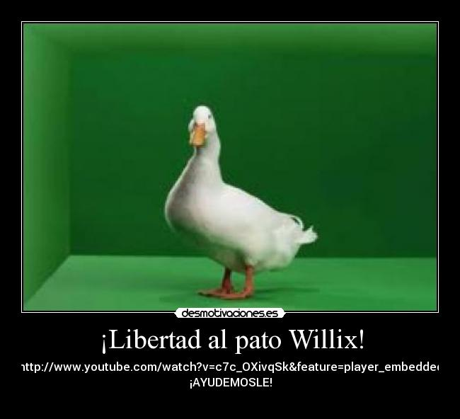 ¡Libertad al pato Willix! - http://www.youtube.com/watch?v=c7c_OXivqSk&feature=player_embedded ¡AYUDEMOSLE!