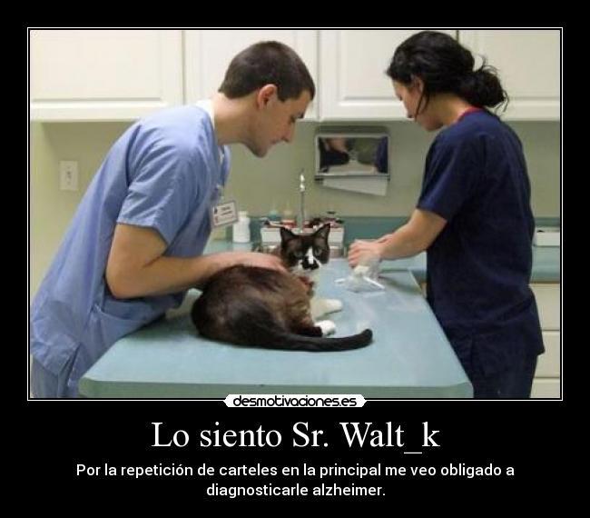 Lo Siento Sr Waltk Desmotivaciones