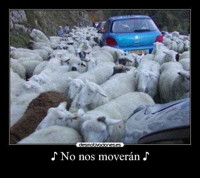 ♪ No nos moverán ♪ -