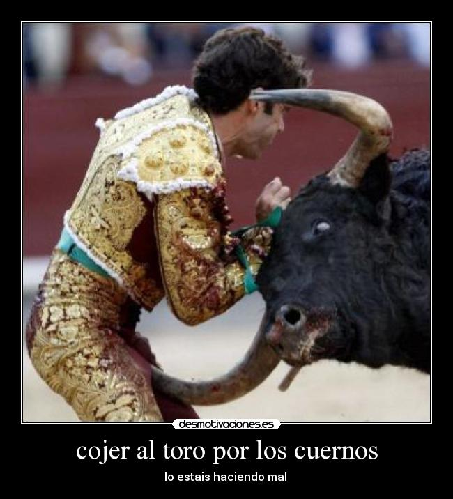 Bull Fighter Injuries