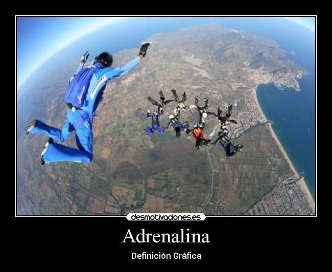 DEFINICION DE ADRENALINA EBOOK