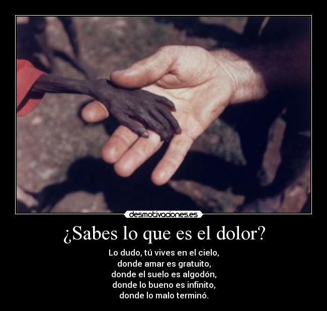 carteles dolor dolor horrible africa impactante lunnarisdeidhun desmotivaciones