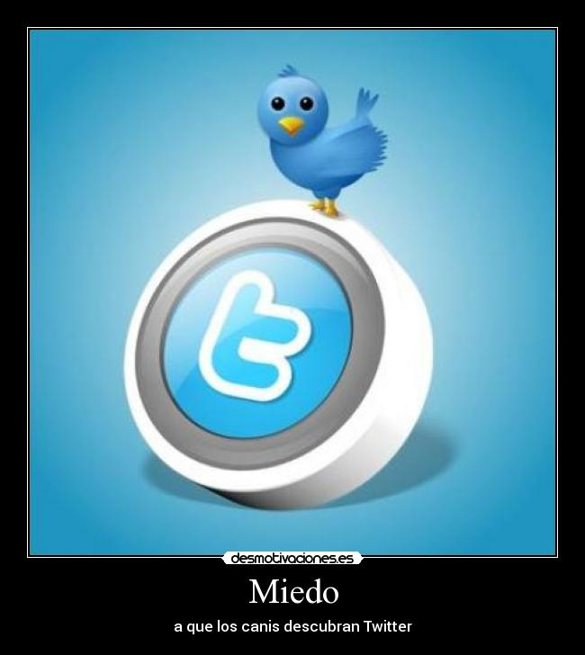 Miedo - a que los canis descubran Twitter
