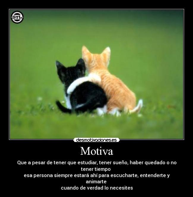 http://desmotivaciones.es/demots/201105/amigos_73.jpg
