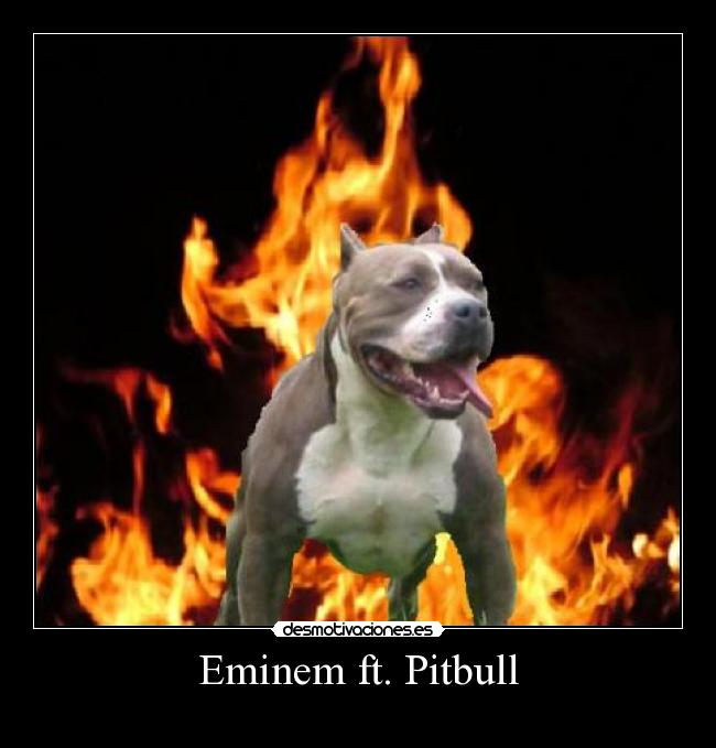 Eminem ft. Pitbull -