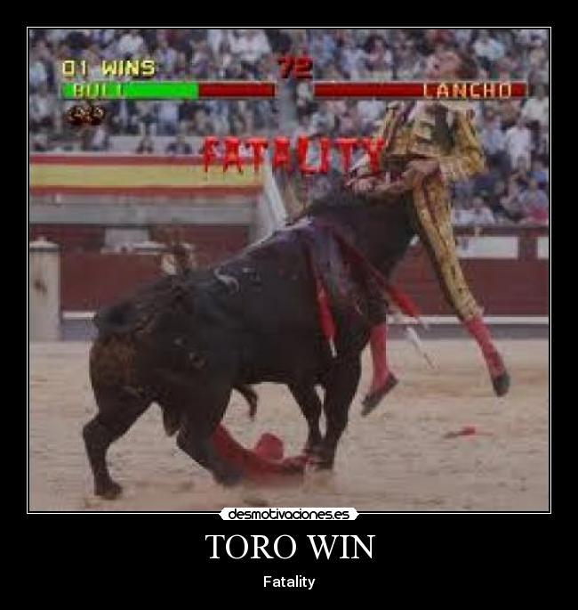 La venganza del toro :D (el torero esta grave)