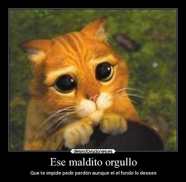 http://img.desmotivaciones.es/201105/images_8243.jpg