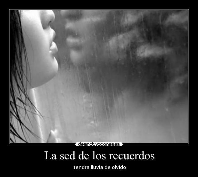 carteles recuerdos sed los recuerdos tendra lluvia olvido desmotivaciones