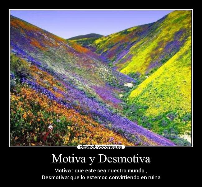 carteles flores motiva demotiva mundo destruir desmotivaciones