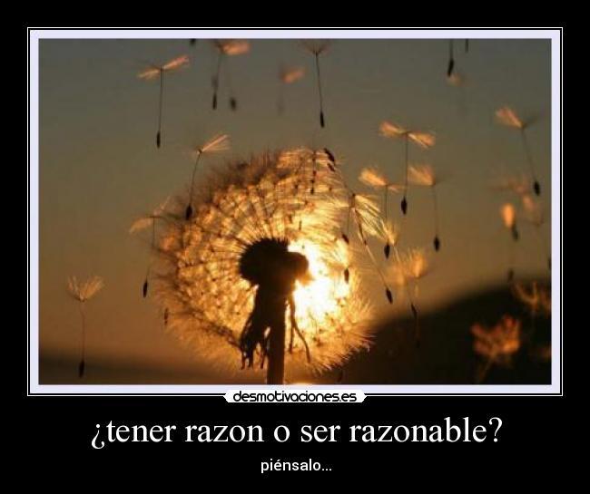 ¿tener razon o ser razonable? - piénsalo...
