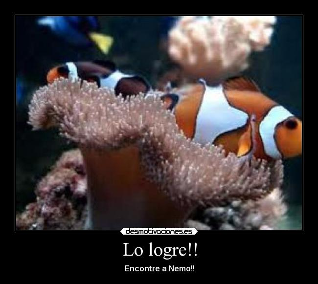 Lo logre!! - Encontre a Nemo!!