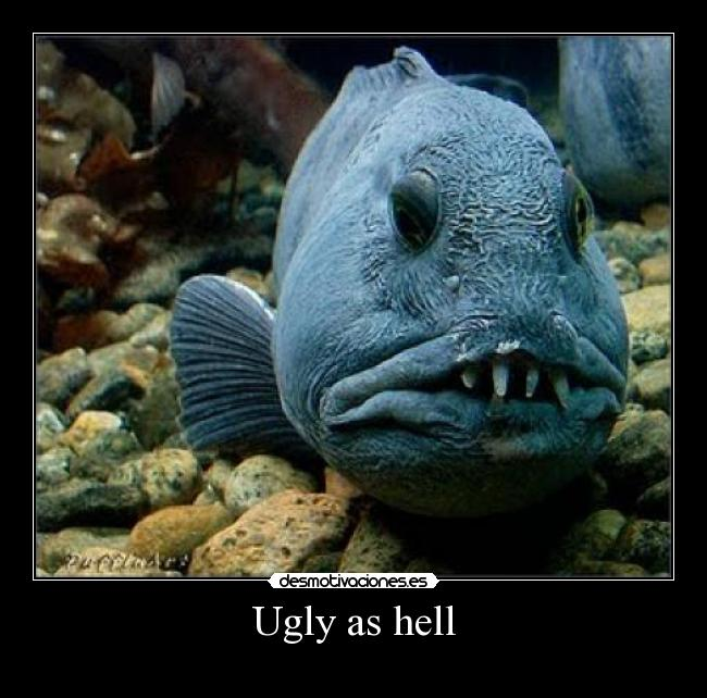 Ugly as hell -