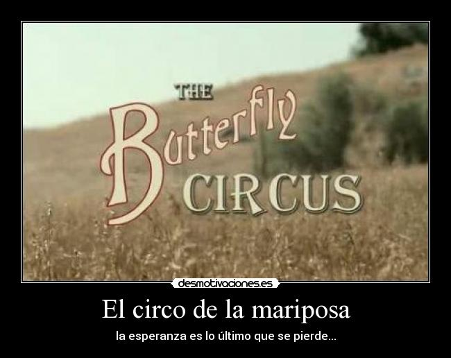 El Circo De La Mariposa Desmotivaciones