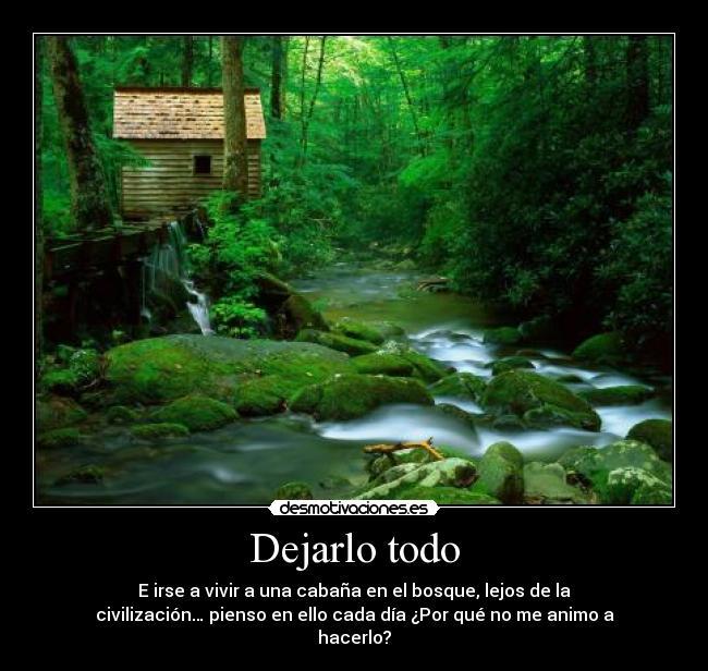 Imágenes Y Carteles De Bosque Pag 13 Desmotivaciones
