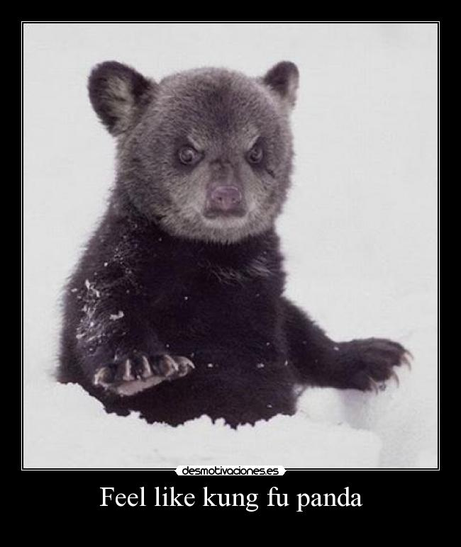 Feel like kung fu panda -