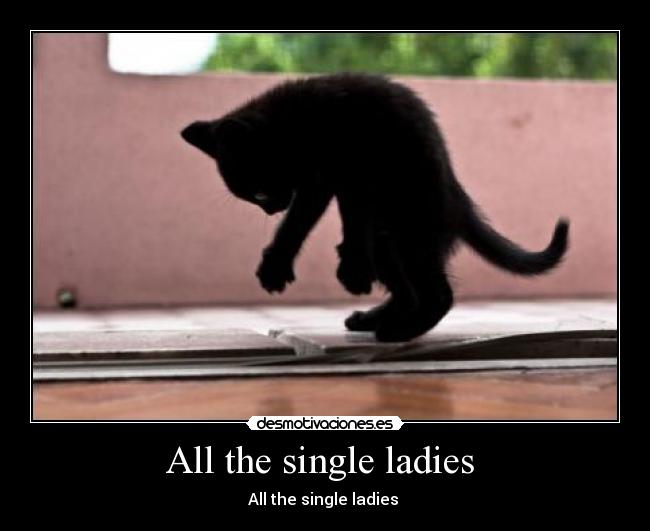 All the single ladies  - All the single ladies
