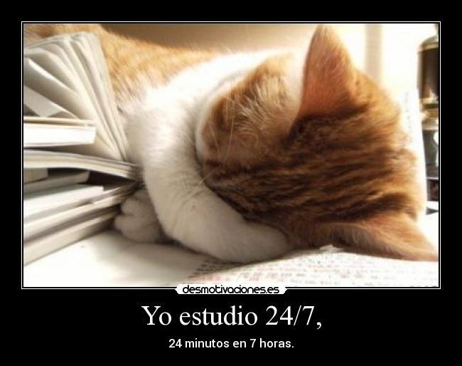 Yo-estudio-247