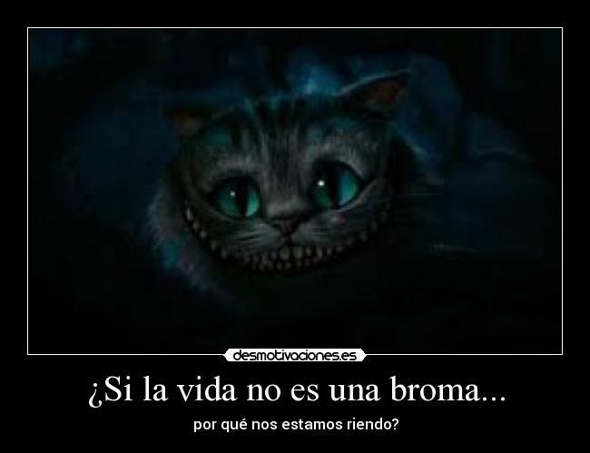 Sonriente el gato - Imagui