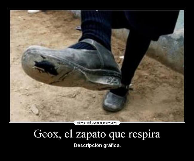 GeoxEl Que Zapato GeoxEl Zapato RespiraDesmotivaciones DH9IE2