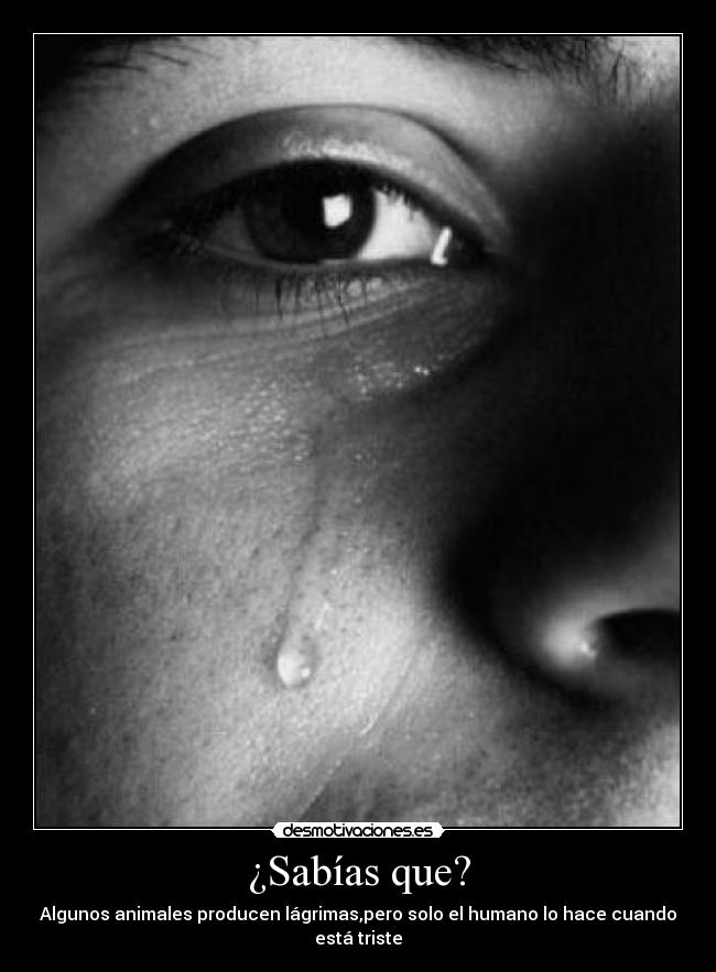 hombre llorando solo