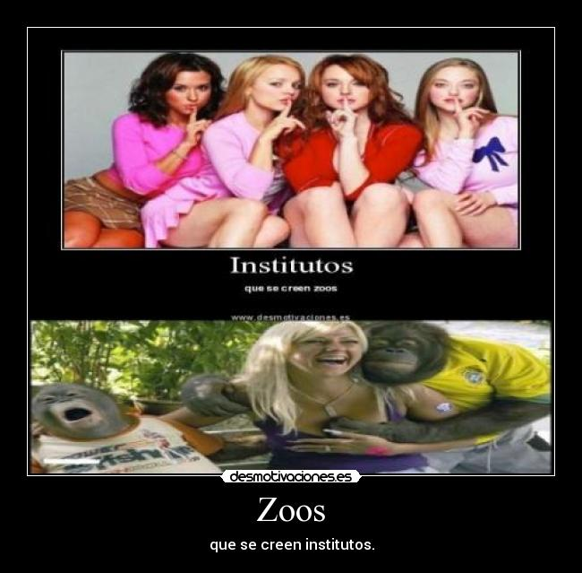 Zoos - que se creen institutos.