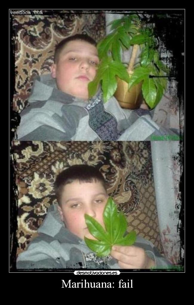 carteles fail marihuana fail desmotivaciones
