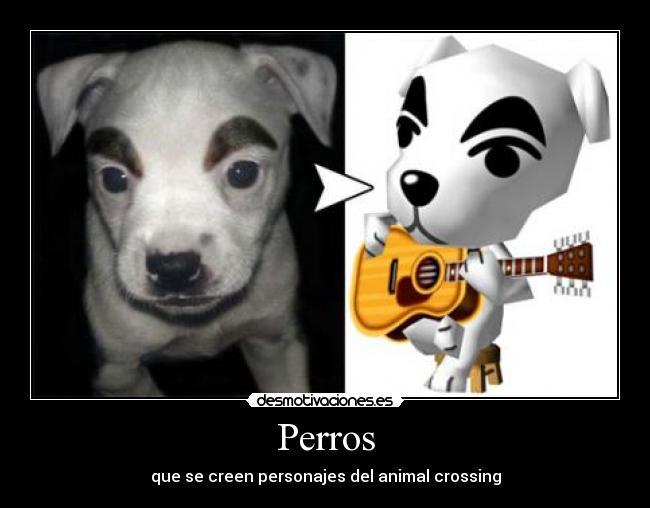 Perros - que se creen personajes del animal crossing