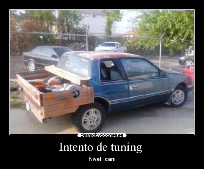 Intento de tuning  - Nivel : cani