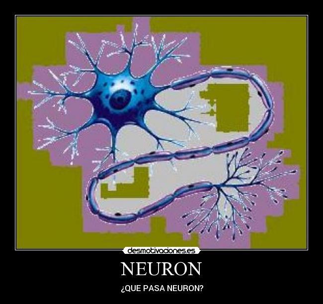 NEURON - ¿QUE PASA NEURON?