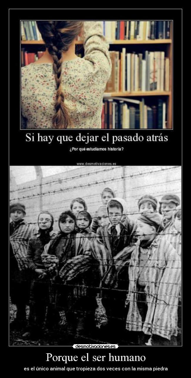 carteles error historia ser humano animales nazis desmotivaciones