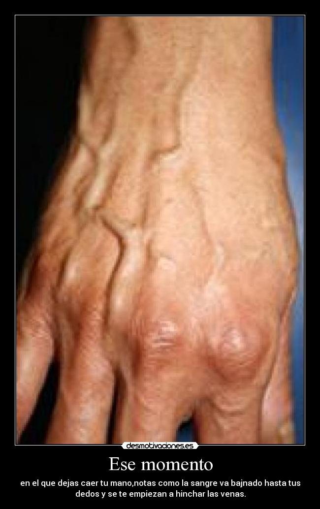 La anatomía de las venas de los pies de la persona